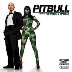 Pitbull - Shut It Down