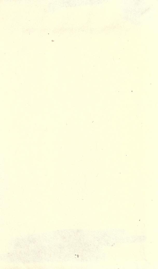 Leaf0341_s4